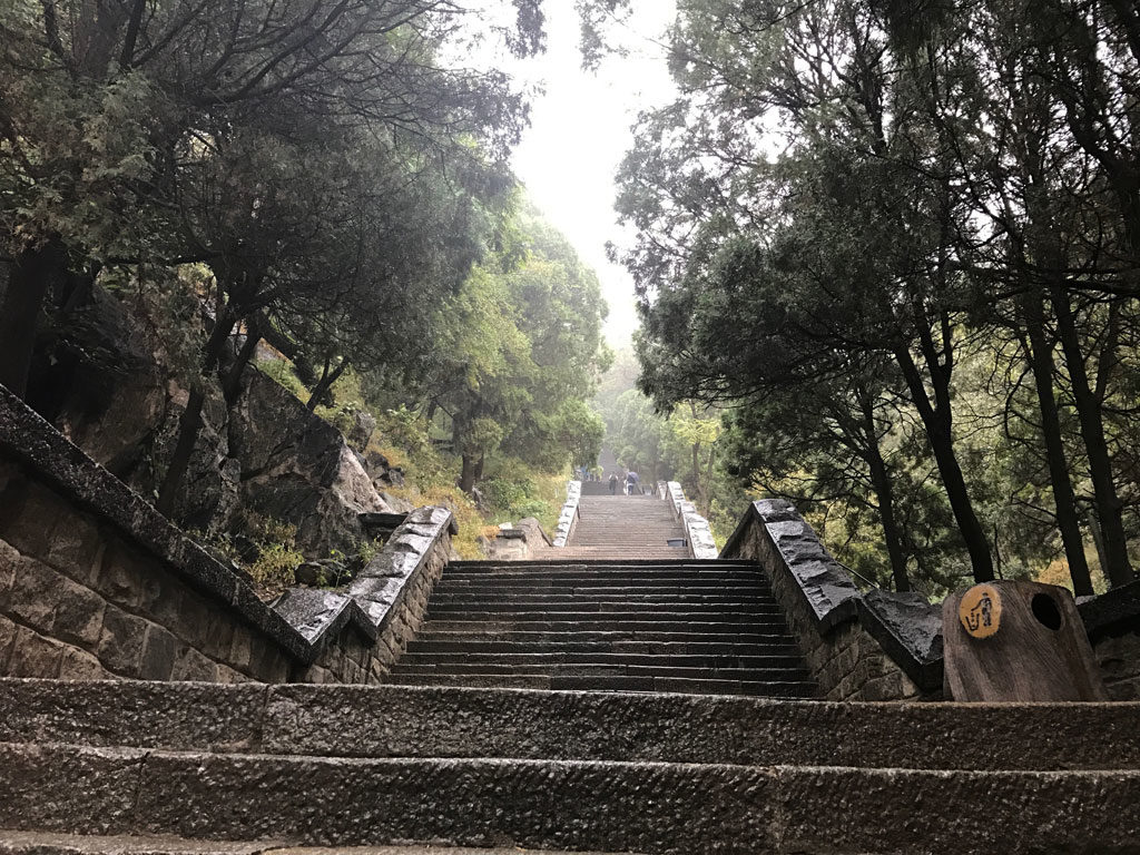 """Shortly after starting hike from Red Gate is this """"wall of steps""""."""