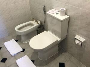 5-star bathroom in hotel