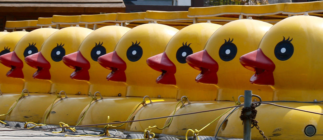 duck boats at xuanwu lake pano