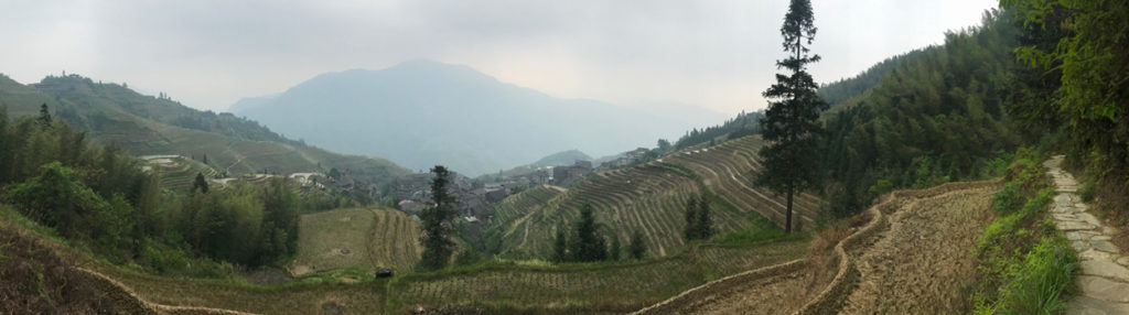 Rice terrace hiking path
